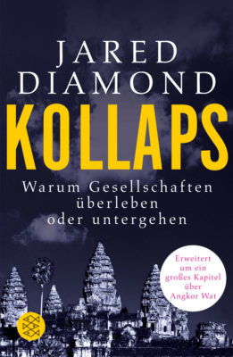 19258-Diamond-Kollaps.indd