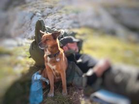 Und nochmal: Der beste Wanderfreund