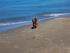 ...den sonnigen Küsten Siziliens...