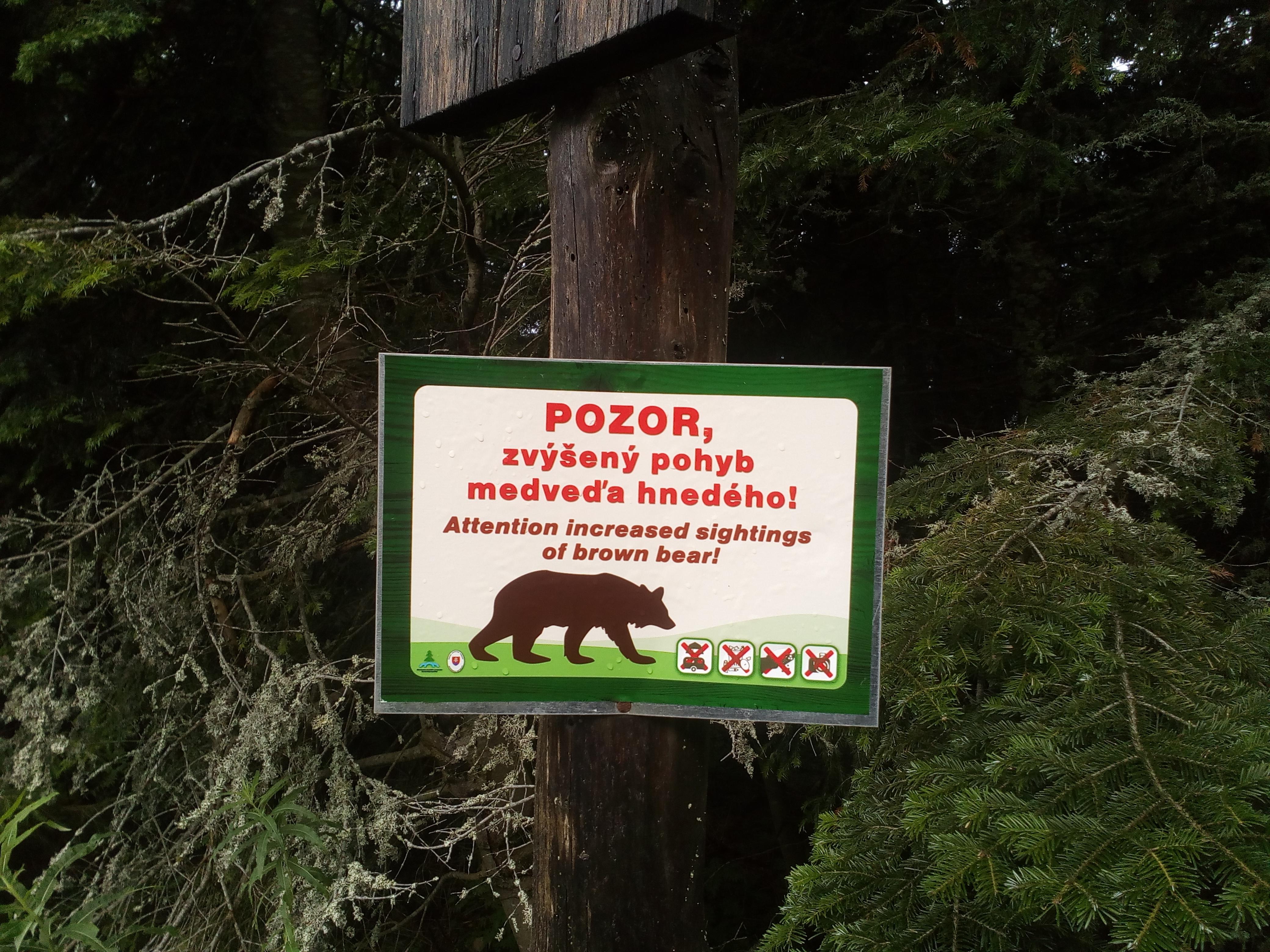 Wir verlassen die touristisch gemäßigte Zone. Die verwilderte, östliche Niedere Tatra beginnt.
